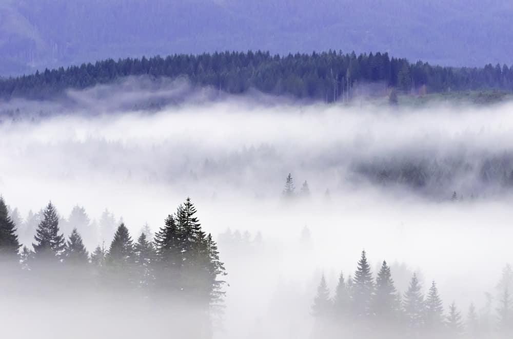 Kako nastaje magla